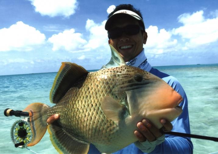 Ng-yellowmargin-triggerfish.jpg