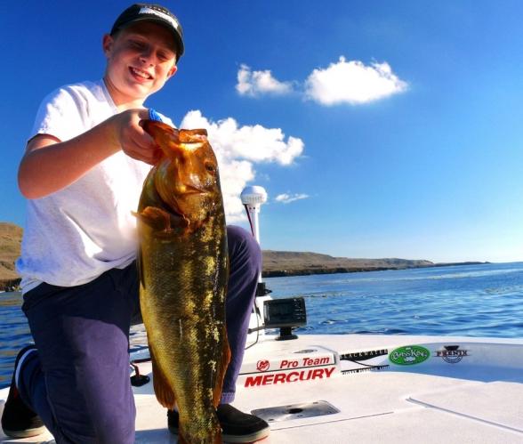 Ponder-kelp-bass.jpg