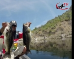Anglers TV presenta Bass Tips No.8- Patrón de Desove