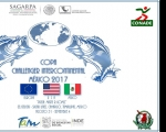 RESUMEN COPA CHALLENGER INTERCONTINENTAL MEXICO 2017