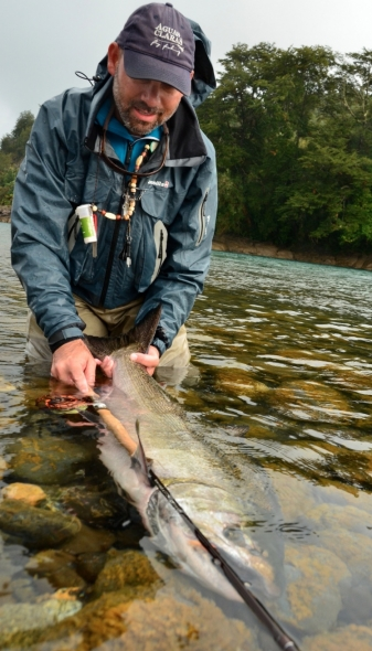 salmon-chinook-imagen-de-pesca-con-mosca-de-salmon-king-por-pablo-rodrigo-perez-fly-dreamers-FDID749w10000h1mimg_5328cba16c7f2.jpg