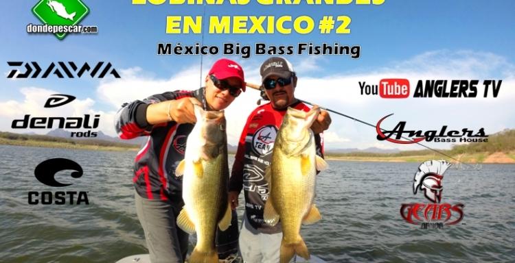 Anglers Tv LOBINAS GRANDES EN MEXICO, Big Bass Fishing #2