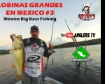 Lobinas Grandes en México / México Big Bass Fishing #3