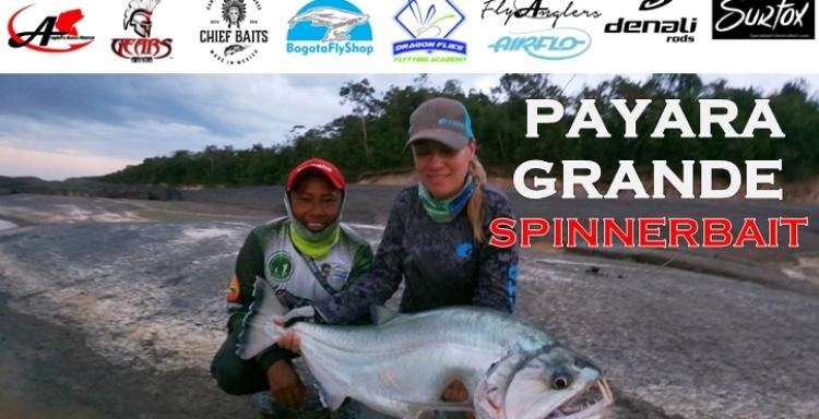 Anglers Tv PAYARA grande con SPINNERBAIT, Río Vichada, Colombia