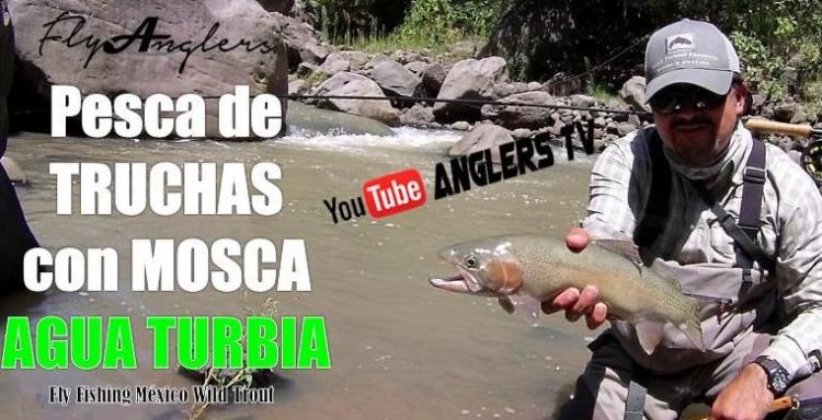 Anglers Tv Pesa con mosca de trucha en aguas turbias