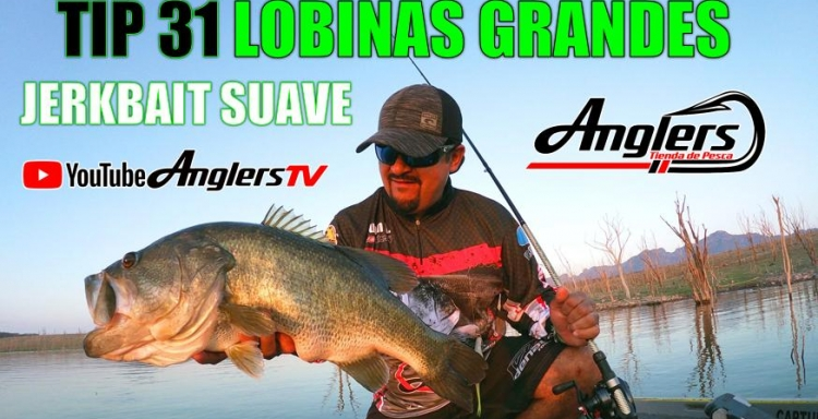 Anglers Tv TIP 31 PESCA DE LOBINA JERKBAIT SUAVE
