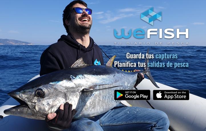 WeFish-app.jpg