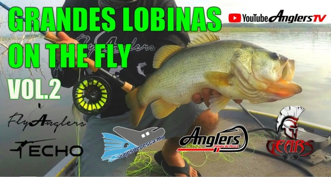 LOBINA ON THE FLY 2.jpg