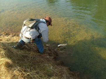 pescando truchas dondepescar