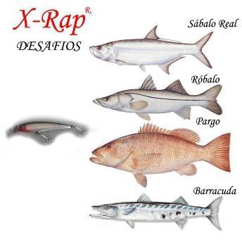100 tips para la pesca del Sabalo