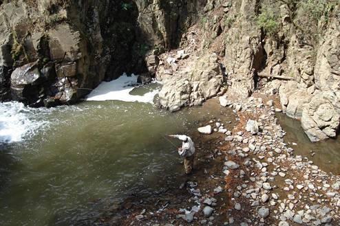 Nuestros rios depredados