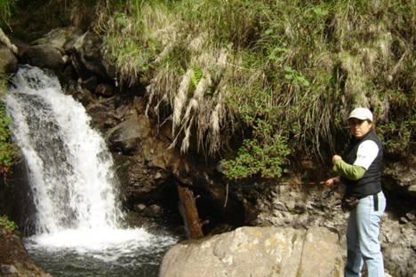Pescando truchas Arcoiris en Rio parte 1