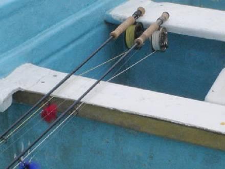 Canas de mosca para pescar en el mar