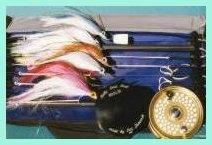 Lideres para pescar con mosca en el mar