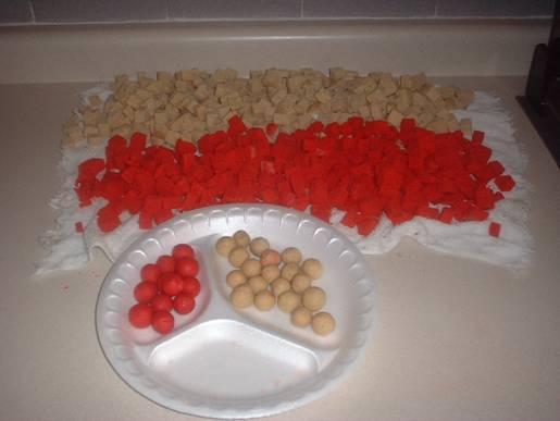 Preparando Boilies, carnada para Carpa