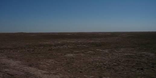 Pesca en el desierto, lobinas de Baja