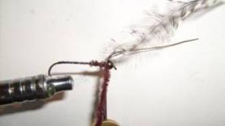 Atando un Acocil, para la pesca de trucha