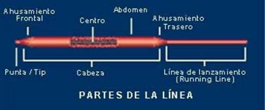 Partes de la línea