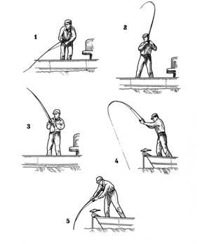 Como pescar su trucha