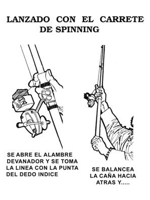 Conceptos basicos de la pesca (Carretes)