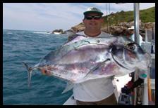 Pesca Vertical - Jigging en agua salada - Los basicos