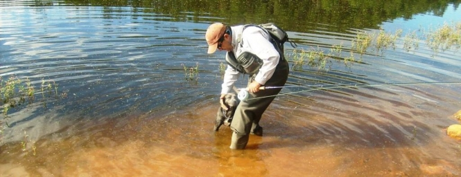 Juan antonio Pérez pescando truchas silvestres