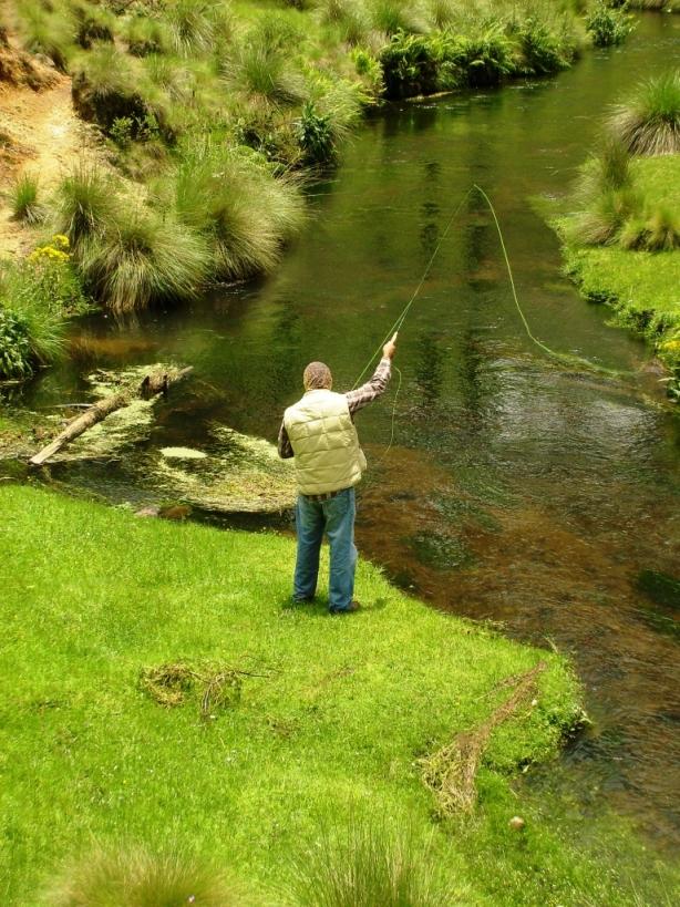 pescando en rio