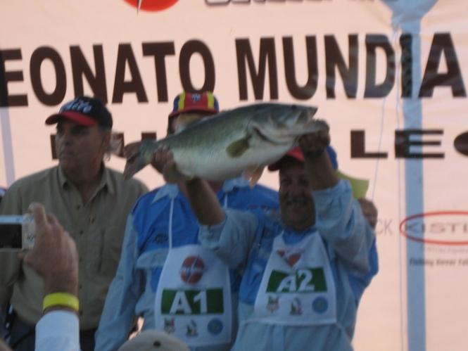 lobina record en mundial 6.060 kgs el Cuchillo
