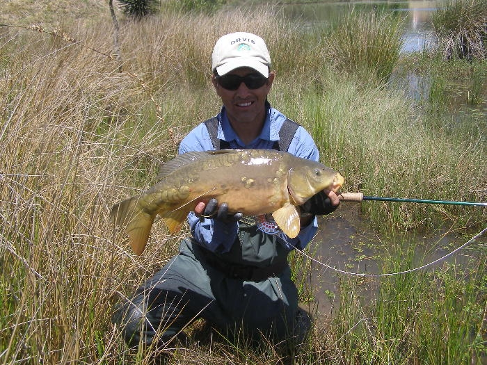Carpa Luis Vargas Fly Fishing