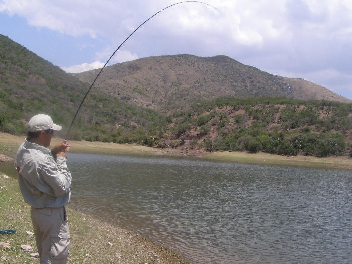 Luis Vargas Fly Fishing