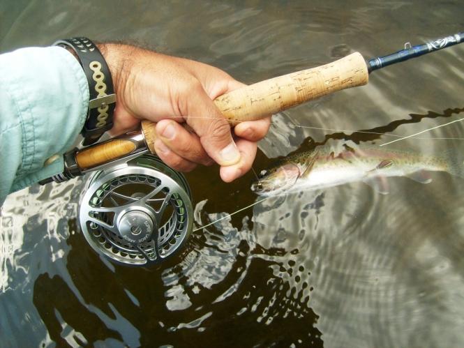 Vinyl boatman atado Anglers Donde Pescar