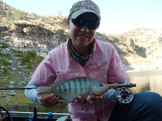 Tilapia con mosca fly fishing ross reels