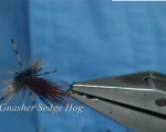 VIDEO Atando con Davie McPhail, gnasher sedge hog
