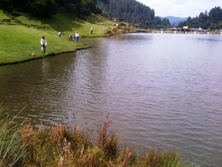 Lerma-20121020-01255.jpg