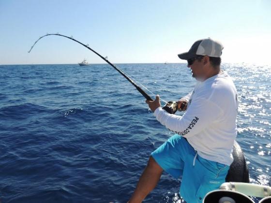 Donde Pescar :: Pescando en Punta Cabeza de Ballena