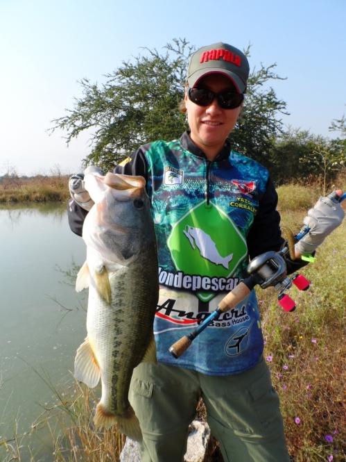 Rapala TS2 caña Pesca Anglers lobina bass